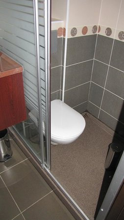 Ares Hotel Istanbul: Toilet in shower, room 403