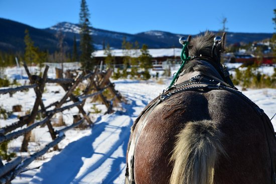 Sombrero Stables at Snow Mountain Ranch: Great day for a sleigh ride!