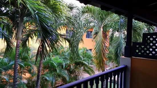 Catalonia Gran Dominicus : The view from our balcony.