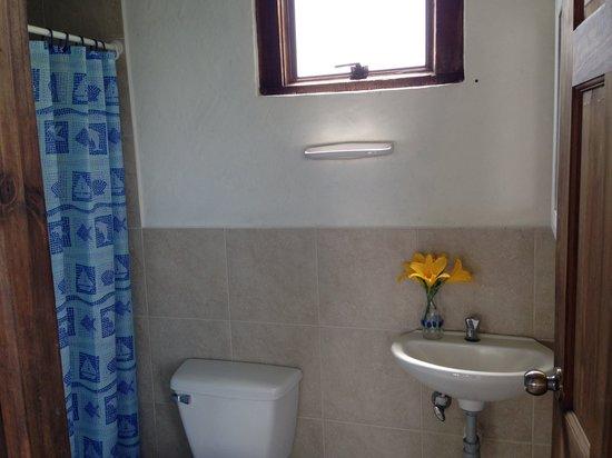 Hostal & Cabana El Trebol: Bathroom