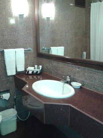 Hotel Hindusthan International Kolkata : Wash basin