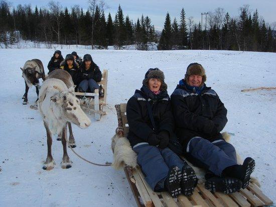 Tromso Lapland: reindeer sledding in Tromso