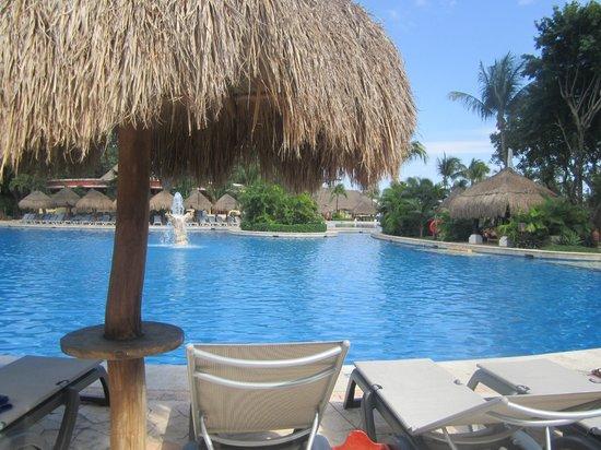 Iberostar Tucan Hotel: Pool View
