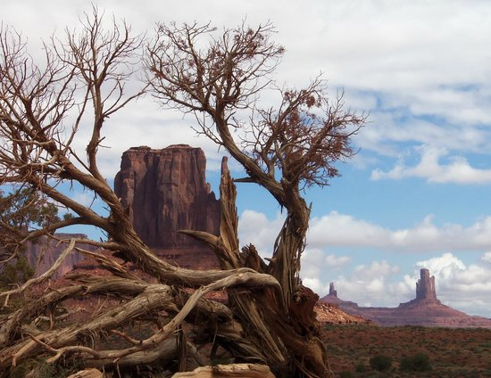 Monument Valley Safari: One of the many breath taking views