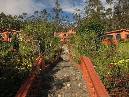 Ali Shungu Mountaintop Lodge: Hotel & grounds