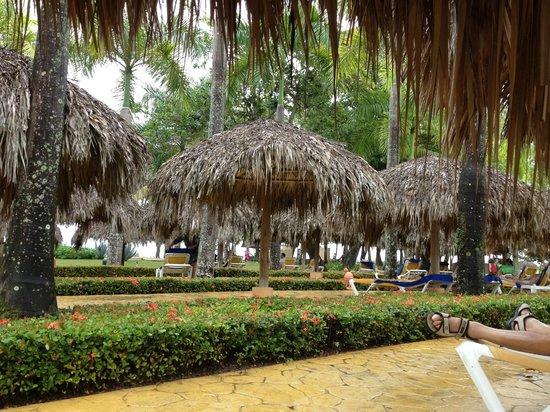 Iberostar Costa Dorada: An oasis