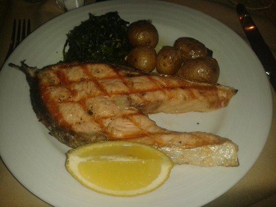 Leao d'Ouro: Salmon