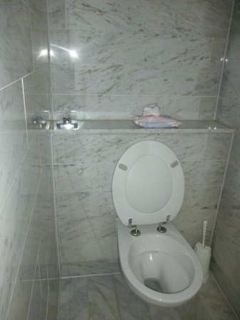 Radisson Blu Hotel, Amsterdam: Toilet