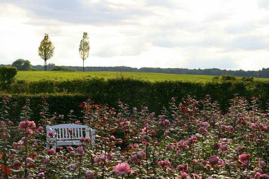 Schloss Marihn: der Rosengarten