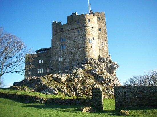Roch Castle Hotel: Roch castle