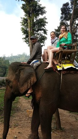 Libra Guest House : Riding the Elephants