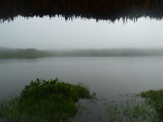 Napo Wildlife Center Ecolodge: Misty morning view from our cabin
