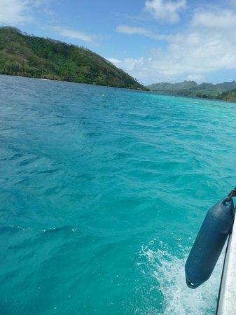 Mahana Dive : Turquoise