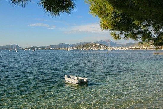 Hotel Illa d´Or: Вид на Порт де ПОЛЬЕНСА