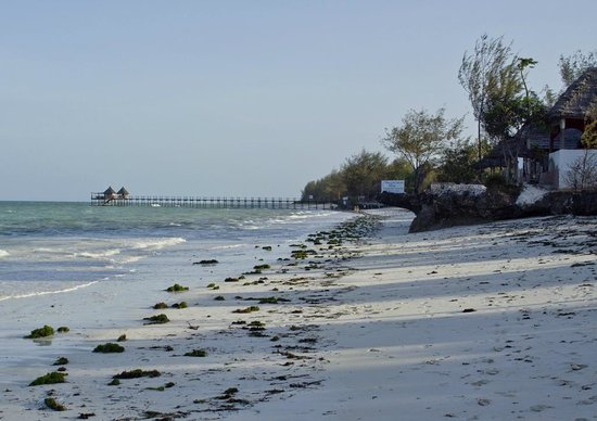 Mbuyuni Beach Village: Looking south along the beach