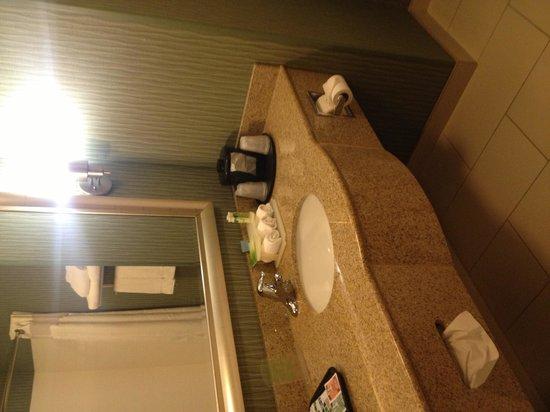 Holiday Inn Express Hotel & Suites Cordele North: Bathroom