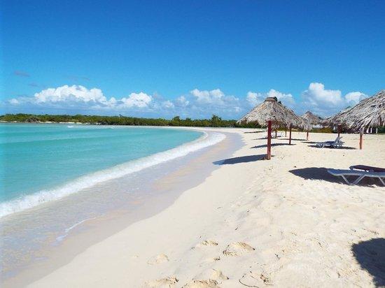 Hotel Brisas Covarrubias: AMAZING BEACH