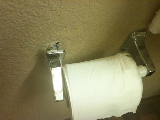 Extended Stay America - Orlando - Lake Buena Vista: Toilet Tissue Holder