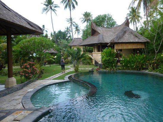 Amertha Bali Villas: villas bord de route