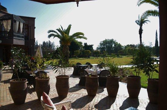 Palais Clementina : terrasse privée