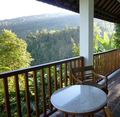 Munduk Sari Nature & Garden Villa: balcon