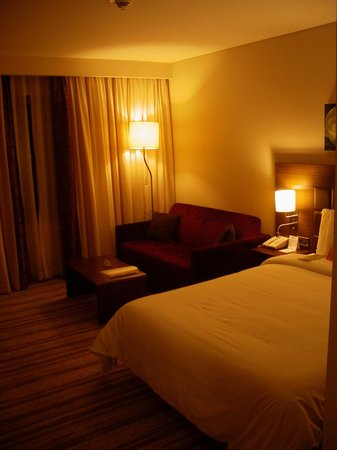 Hilton Garden Inn Sanliurfa: Room first view