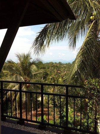 Kirikayan Luxury Pool Villas & Spa: View from rooftop terrace