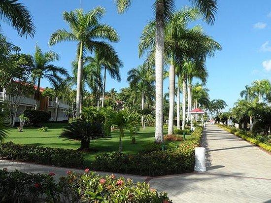 Grand Bahia Principe La Romana : View from patio, the walkway to the beach and pool area