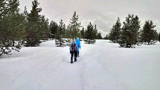 Hole Hiking Experience: Grand Tetons with Hole Hiking