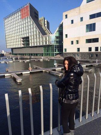 Room Mate Aitana : My bayby, hotel over looking the docks