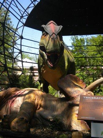 Memphis Zoo: Dinosaur exhibit