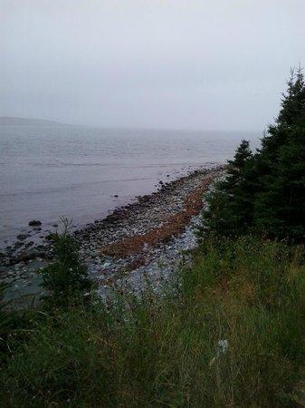 East Coast Trail: serenity