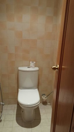 Hotel Ras El Ain Tozeur : Separate toilet and bath