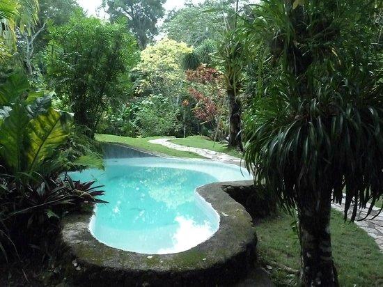 La Mansion del Pajaro Serpiente: lovely pool area