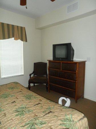Lake Buena Vista Resort Village & Spa: Televisión viejita pero rendidora. Hay otras habitaciones con LCD!