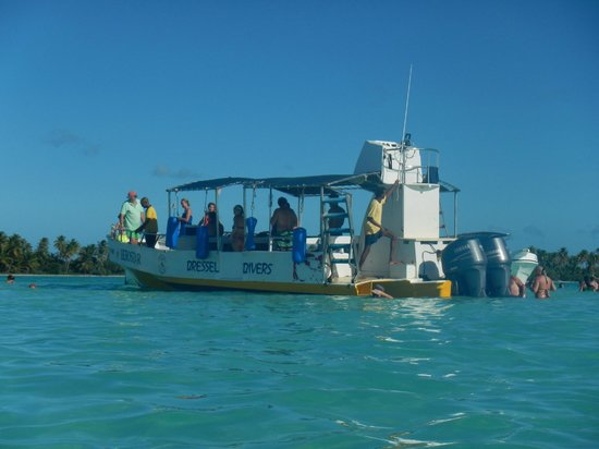 Dressel Divers Bayahibe : Boat