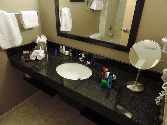Best Western Premier Miami International Airport Hotel & Suites: Interior del Baño
