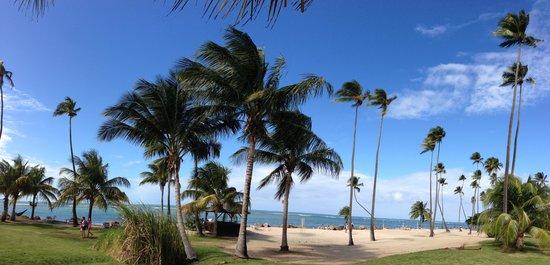 Gran Melia Golf Resort Puerto Rico : Beach view