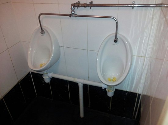 Teign Cellars: Toilets- cracked drainage pipes and silicone repairs. Very basic.
