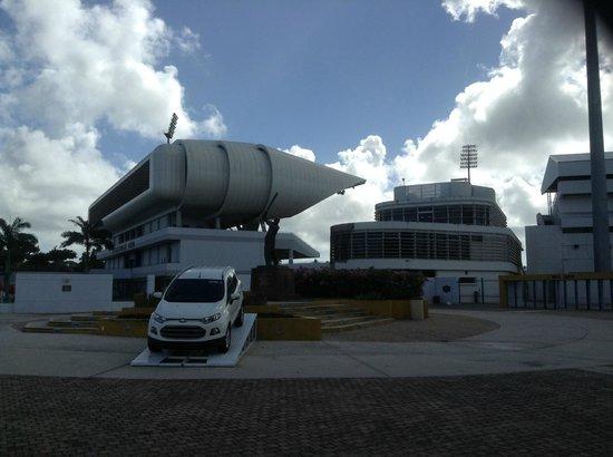Kensington Oval : View of the Stadium