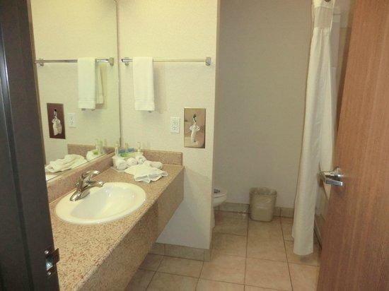 Holiday Inn Express Alburquerque N - Bernalillo: bathroom