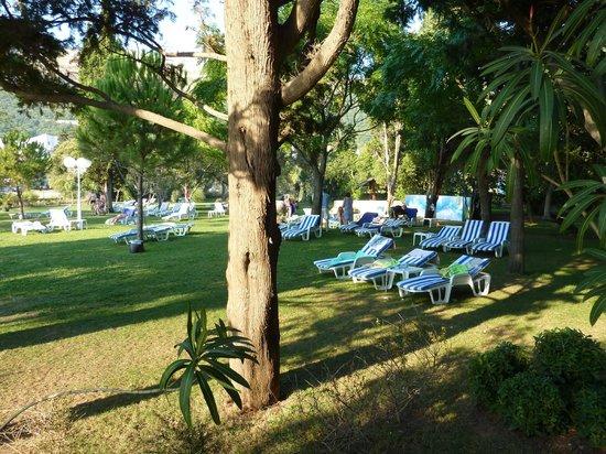 Hotel Rivijera: Зеленая лужайка, 20 м до моря.