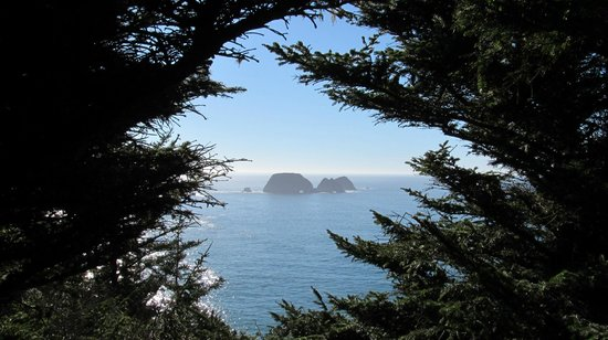 Cape Meares Lighthouse and Wildlife Refuge : The view from the path to the lighthouse
