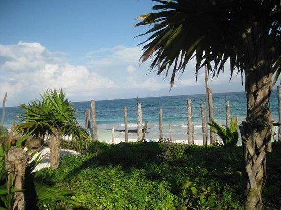 Suenos Tulum: View of the beach