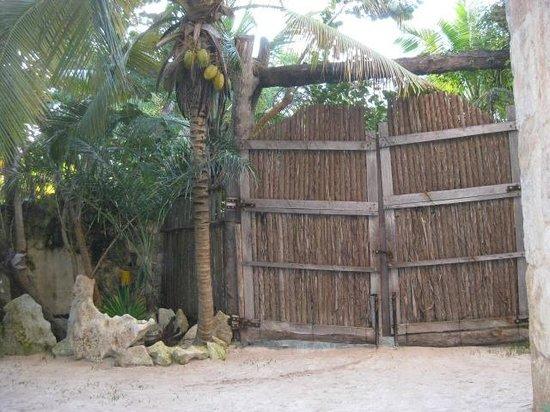 Suenos Tulum : Wooden doors to the property