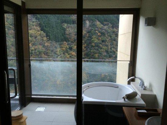 Hotel Iyaonsen : 内風呂