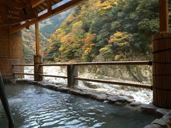 Hotel Iyaonsen : 露天風呂