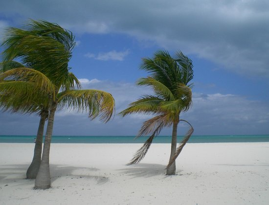 Isla Pasion: view from the beach!