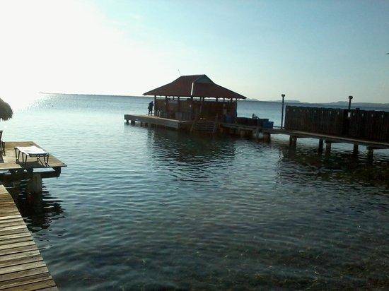 Divi Flamingo Beach Resort and Casino : Our dive lockers and dive boat dock