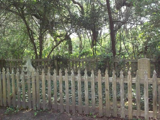 Springer's Point Preserve : Where Sam Jones and his horse are buried in here